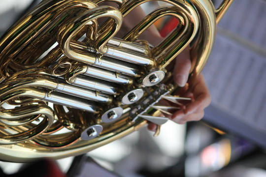 Cropped Image Of Person Playing French Horn