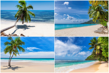 Fototapete - Tropical white sand beach with coco palms and the turquoise ocean on Paradise island. Kit 4 stock photos styled paradise beach.