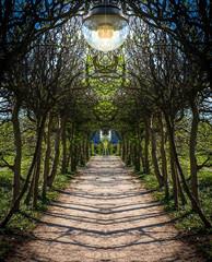 gespiegelter weg mit Bäumen im Park