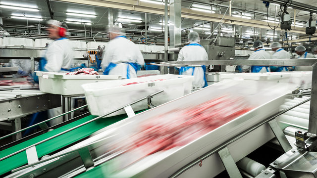 fast production line - meat production technology