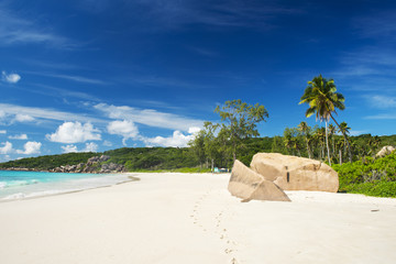 Grand Anse beach in Seychelles