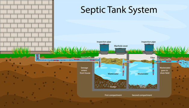 Septic Tank diagram. Septic system and drain field scheme. An underground septic tank illustration. Infographic with text descriptions of a Septic Tank. Domestic wastewater. Flat stock vector