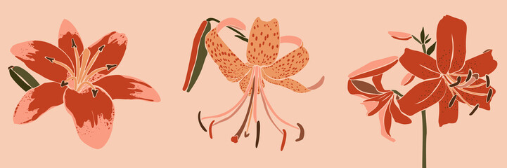 Collection Art collage lily flower in a minimal trendy style. Silhouette of lily plants. Vector illustration Fototapete