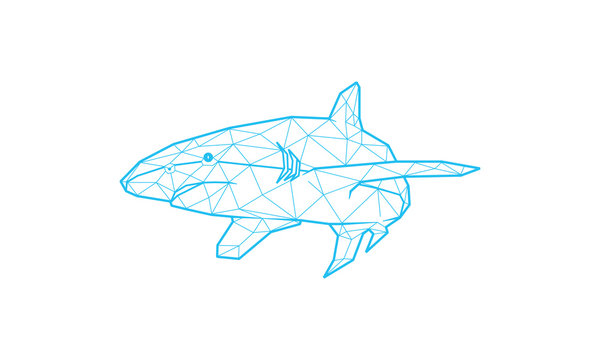 Vector illustration of a shark. shark low poly art