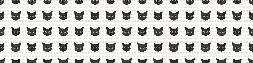 Cute cartoon Bombay cat and kitten face seamless border pattern. Pedigree breed domestic kitty background. Cat lover Asian purebred washi ribbon. Feline EPS 10 trim.  Wall mural