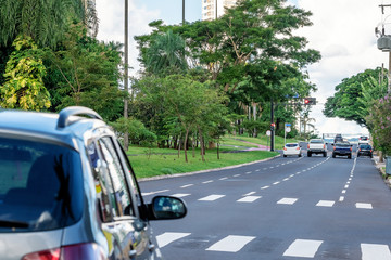 One way avenue with four lanes, large wooded avenue with few traffic of cars. Car stopped before the pedestrian crossing lane. Afonso Pena avenue at Campo Grande MS, Brazil.