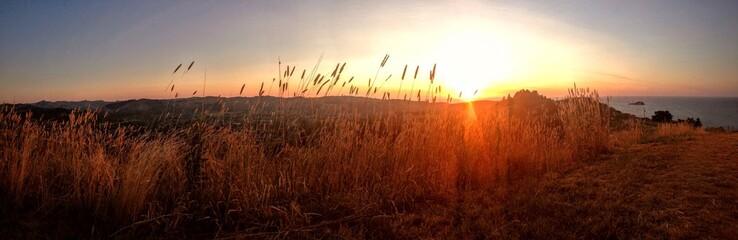 Foto auf Gartenposter Violett rot Scenic View Of Landscape At Sunset