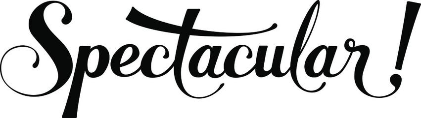 Fototapeta Spectacular - custom calligraphy text obraz