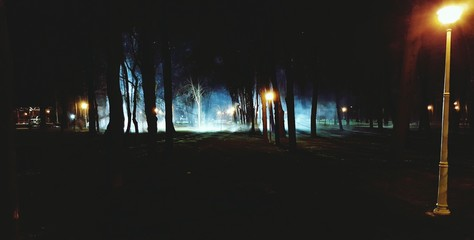 Fototapeta Scenic View Of Landscape Against Sky At Night