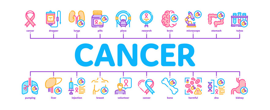 Cancer Human Disease Minimal Infographic Web Banner Vector. Stomach And Intestines, Brain And Kidneys, Liver And Lungs Cancer, Research And Treatment Illustrations