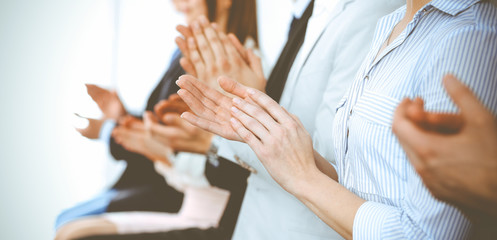 Business people clapping and applause at meeting or conference, close-up of hands. Group of unknown businessmen and women in modern white office. Success teamwork or corporate coaching concept Fototapete