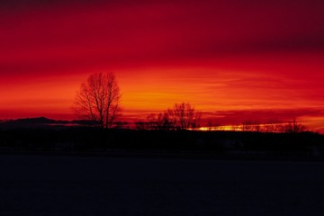 Foto op Canvas Rood traf. Breathtaking sunset scenery in the snowy valley with silhouettes of trees