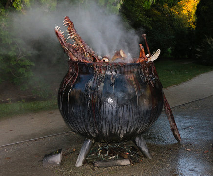 cauldron of boiling water with animal parts