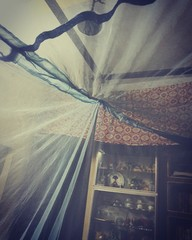 Mosquito Net At Home