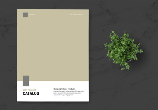 Product Catalog Layout with Brown Accent