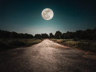 Wall Mural - Landscape of night sky and bright full moon. Asphalt road leading into the forest at night. Serenity background.