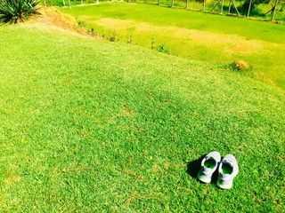 Shoes On Grassland Wall mural