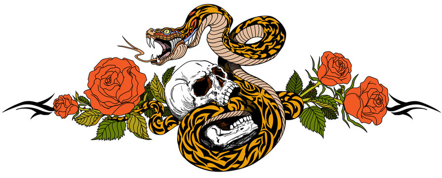 Angry snake coiled around the human skull and rose flowers. Tattoo. Vector illustration