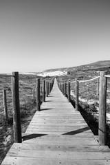 Wooden pathway over the dunes