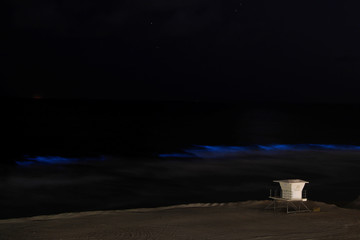Bioluminescent algae glows off California coast during outbreak of the coronavirus disease (COVID-19) in California