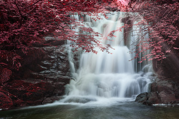 Majestic waterfall in forest landscape image with added drama of false color on trees in woodland