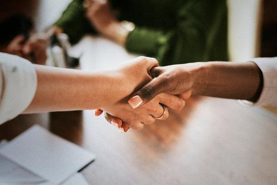 Positive businesswomen shaking hands