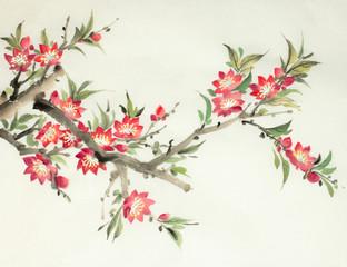 flowering peach branch