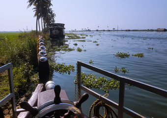 View from houseboat in Alleppey backwaters  kerala india
