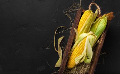 Fototapeta Fresh corn cobs on black background, copy space for chalk text obraz