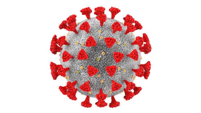 Symbol of Coronavirus COVID-19 outbreak and epidemic and pandemic. 3D rendering illustration of microscopic view of coronaviruses influenza pathogen