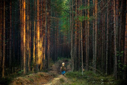 A little boy alone in a dark forest