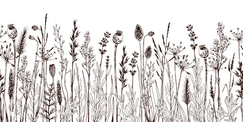 Seamless horizontally border with meadow wild flowers and herbs. Fotobehang