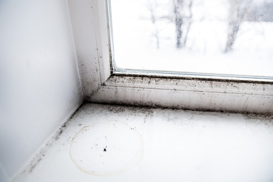 mold in the corner of the window.