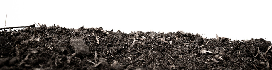 black earth on white background. natural soil texture. Pile heap of soil humus isolated on white background Fotobehang