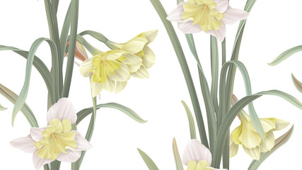 Floral seamless pattern, daffodil flowers with leaves on white