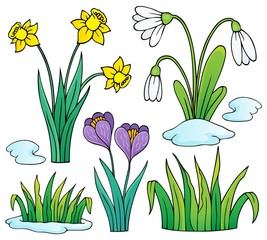 Early spring flowers theme set 1