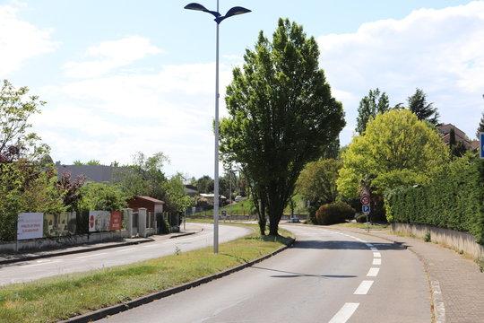 Avenue du 8 mai 1945 à Corbas, rue bordée d'arbres - Département du Rhône - France