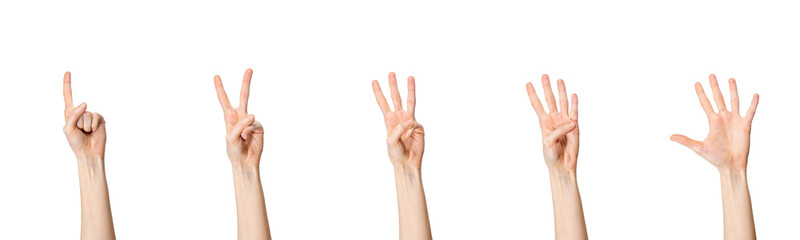 Five counting female hands isolated on white background