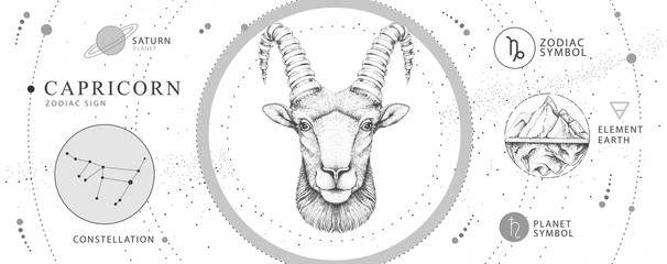 Modern magic witchcraft card with astrology Capricorn zodiac sign. Realistic hand drawing ram or mouflon head. Zodiac characteristic Fotomurales
