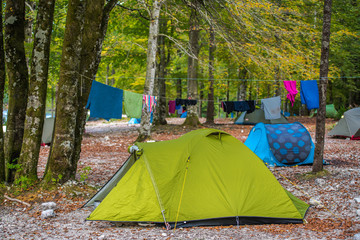 Wall Mural - Vacation In Forest Under Tents.