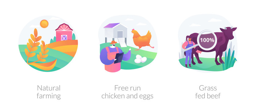 Ecological farming abstract concept vector illustration set. Natural farming, free run chicken and eggs, grass fed beef, sustainable agriculture, food labeling, antibiotics free abstract metaphor.