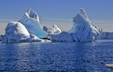 Icebergs Floating In Sea Against Sky