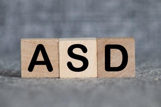 Autism Spectrum Disorder ASD horizontal blocks
