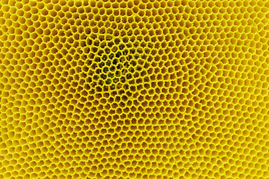 Full Frame Shot Of Abstract Yellow Pattern