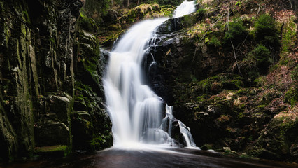 Poster Bos rivier waterfall in the forest ( Karkonosze)