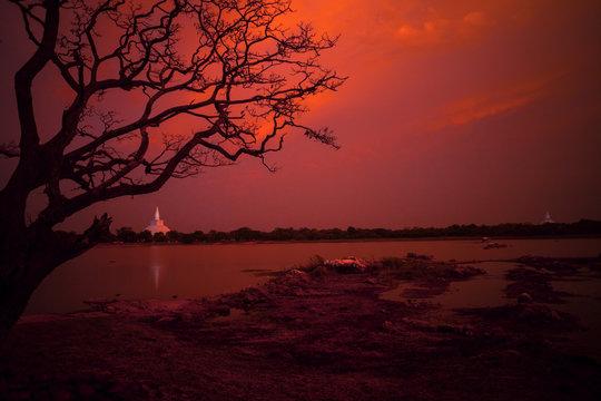 Zachód słońca nad jeziorem, Anuradhapura - Sri Lanka.