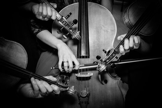 Midsection Of Musicians Playing Cello And Violins