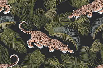 The stalking wild jaguar and palm leaves. .Exotic seamless pattern on a dark background. Hand drawn jungle texture. Vector illustration.