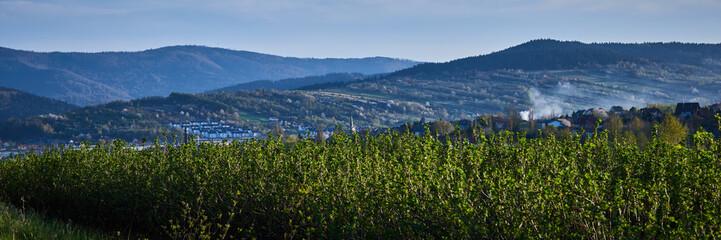 Panorama miasta Myślenice widziana z północnych wzgórz