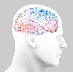 Neurology, philosophy, medicine of the future: neural connections, the development of thought and reflection, how to develop the infinite possibilities of the brain and mind. Human anatomy, 3d render